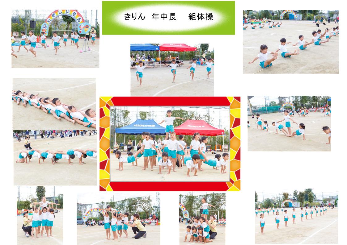 https://hiraharahoiku.com/news/about/126298696_588406265330888_7032094681883934319_n.png